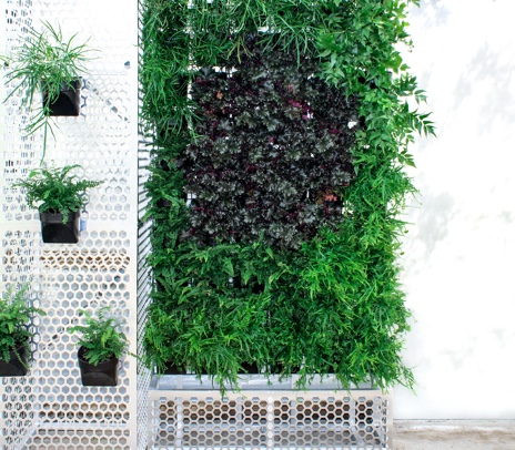 freestanding vertical garden by My Vertical Gardens Melbourne