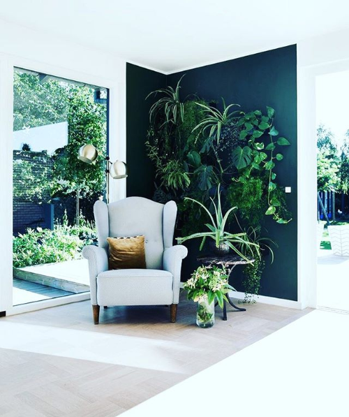 Vertical-garden-indoor