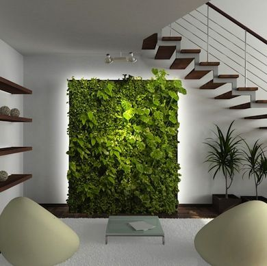 vertical-garden-home