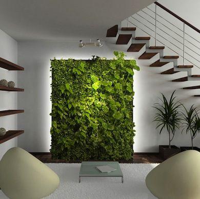 vertical-garden-home