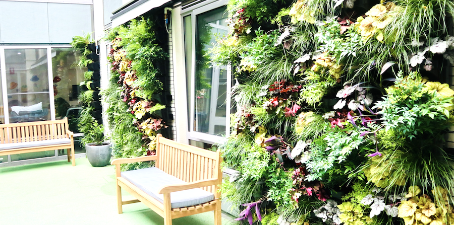 Stunning living garden example in age care facility